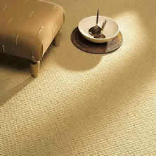 Wool Carpet Cleaning Lacey